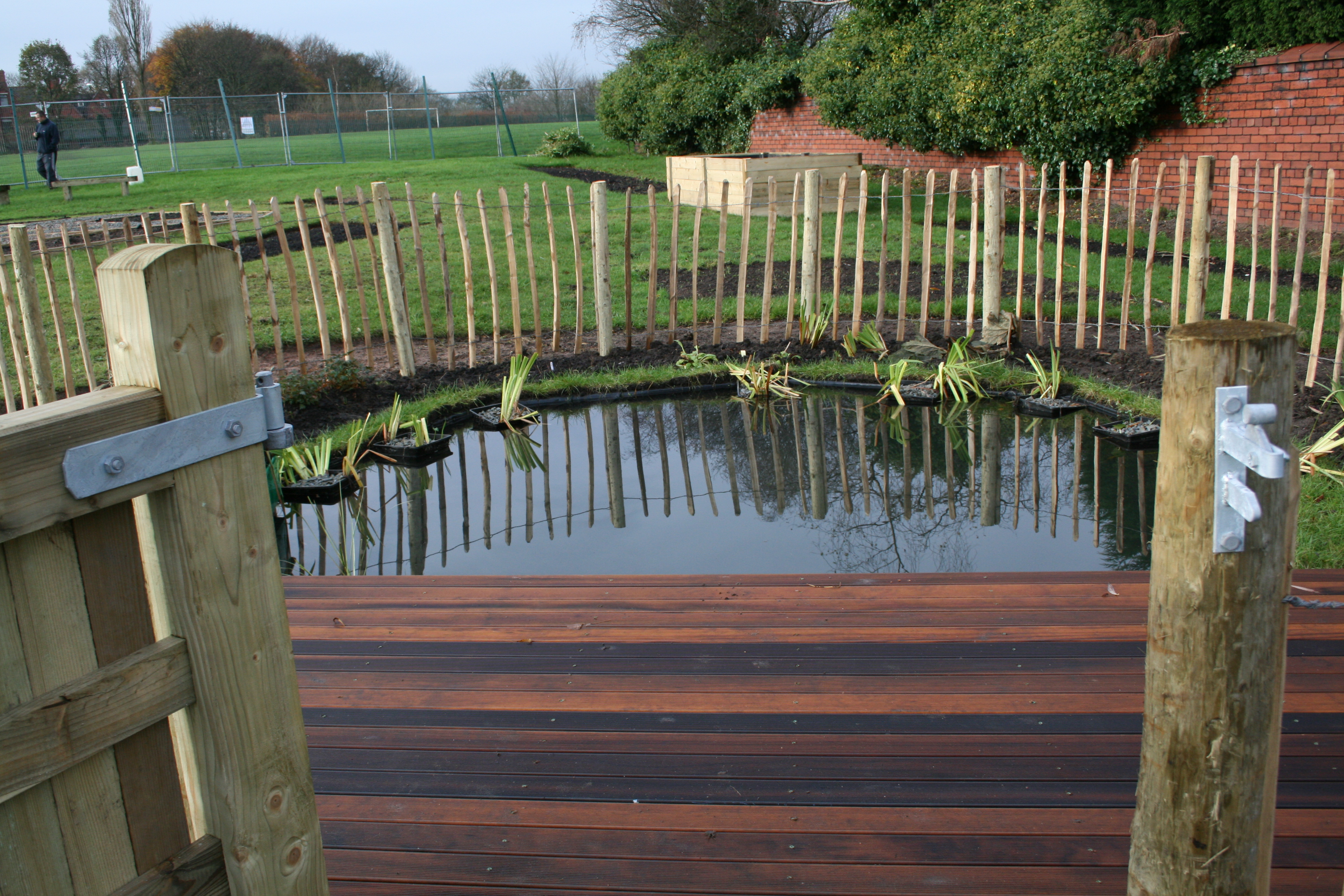 Wildlife Pool with hardwood boardwalk and rustic fencing at Mathew Moss High School Eco-Garden (Rochdale)